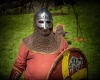 Ritter, Vikinger