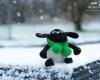 Fionn im Schnee