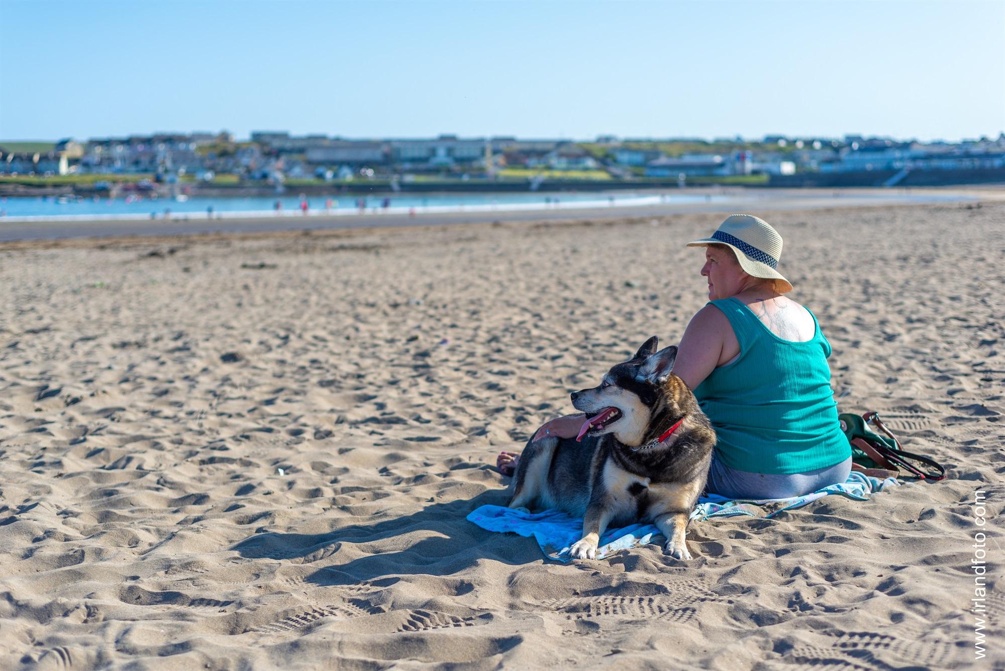 Hund am Strand von Kilkee
