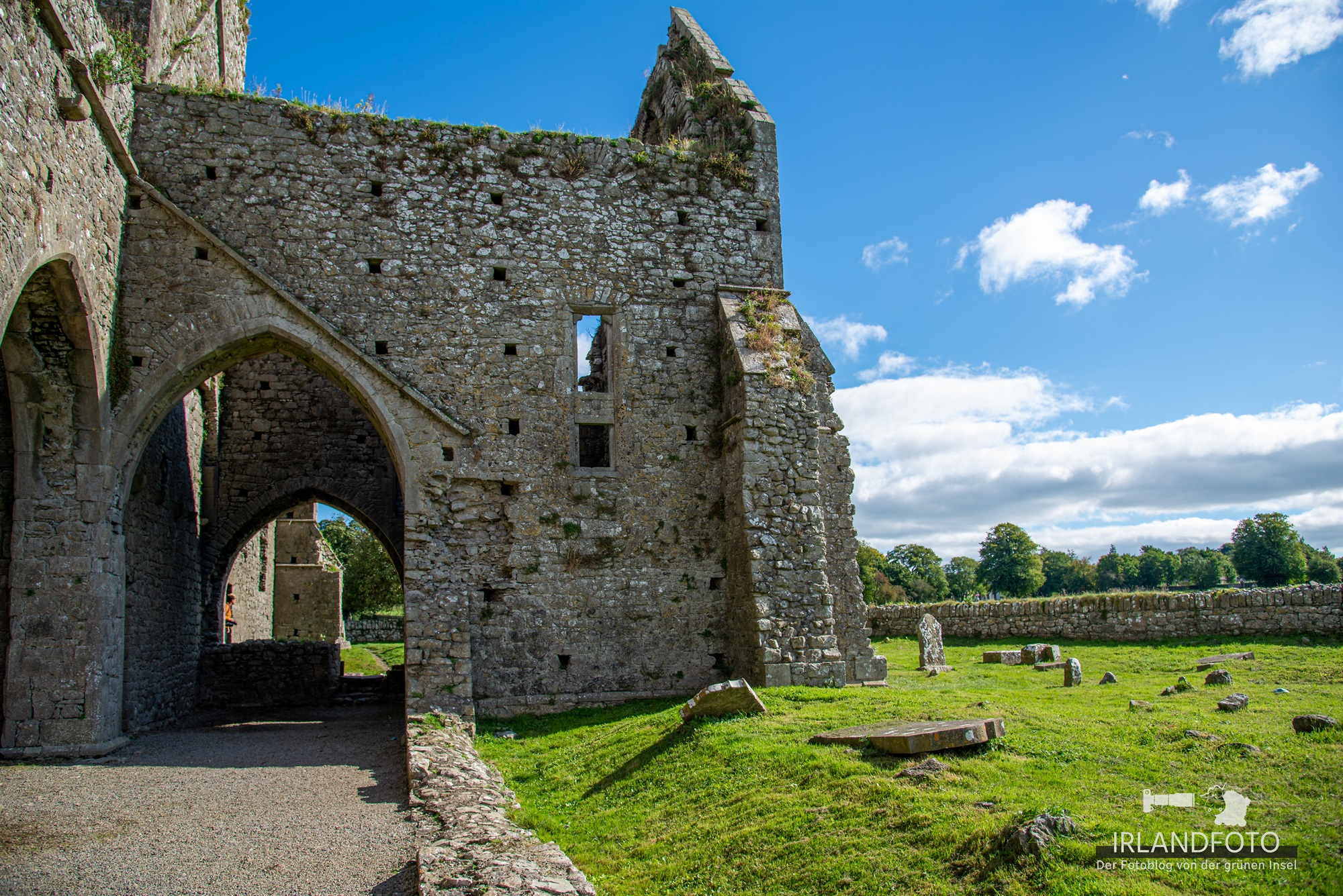Hore Abbey, Co. Tipperary